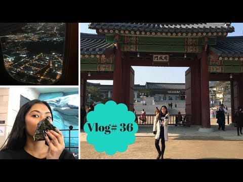 MYEONGDONG CATHEDRAL + GYEONGBOKGUNG PALACE! Korea Day 4 & 5! (December 31,1) VLOGMAS #7
