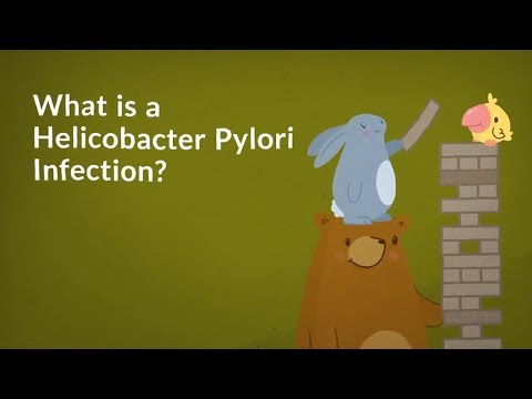 What is a H. Pylori? (Helicobacter Pylori Infection)