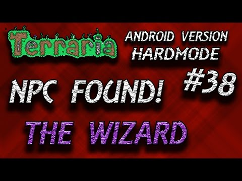 The Wizard   Terraria (Android)   #38