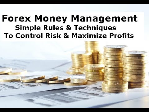 Forex Trading Money Management Rules For Beginners to Target 100% Annual Profits & Control Risk
