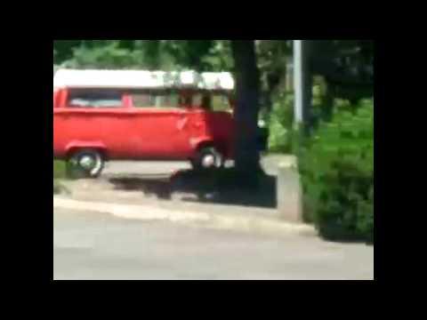 1973 VW Riviera Camper