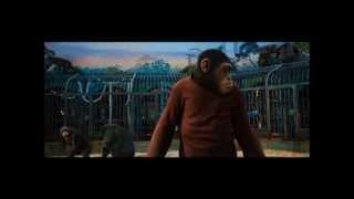 RISE OF THE PLANET OF THE APES (2011): Ceaser Confronts Rocket