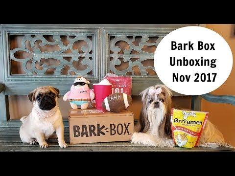 Bark Box Unboxing