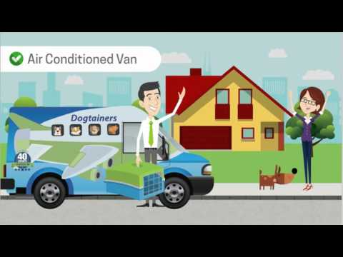 Dogtainers Domestic Pet Transport Australia