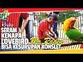 Download  APBN AWARD : PRIA INI UNGKAP ! LOVEBIRD MR.RADEN KESURUPAN, THE REAL KONSLET MP3,3GP,MP4