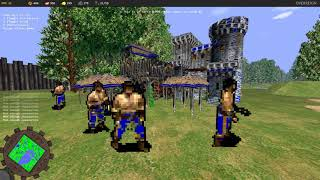 First Person Age of Empires 2 AoE2