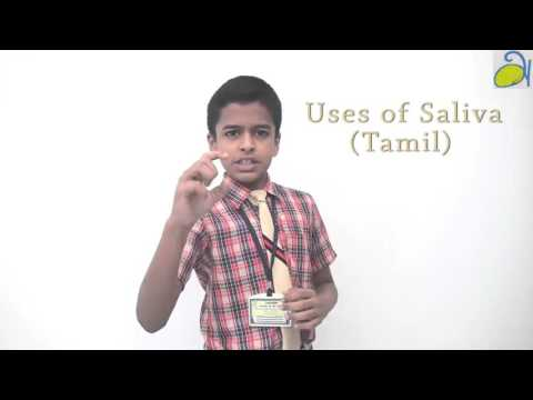 Uses of Saliva Explained in Tamil