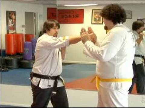 How to Improve Your Martial Arts Quickness : Speed Drill on Grabbing a Punch