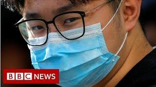 Coronavirus: Australian scientists first to recreate virus outside China - BBC News