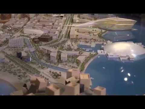 NYU Abu Dhabi Contributions