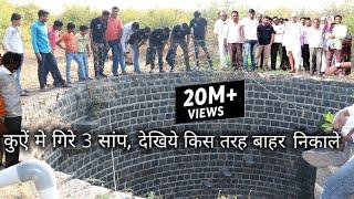 कुऐं मे गिरे 3 साप, फिर आप ही देखिये आगे क्या हुआ, Rescue cobra snake from Ahmednagar, maharashtra