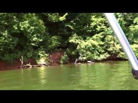 Minn Kota trolling motor on paddle boat in TN.