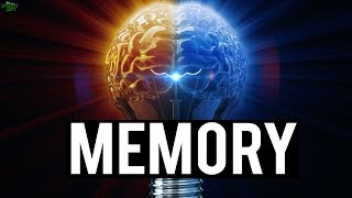 THE 2 TYPES OF MEMORY