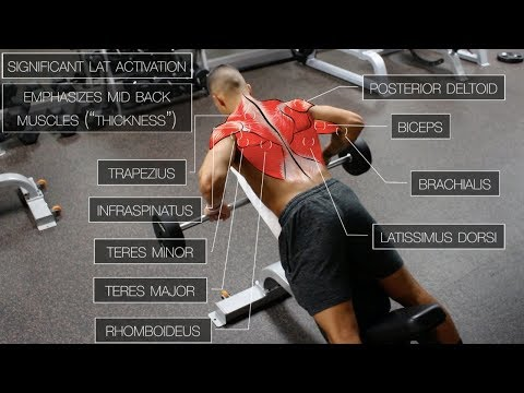 The Best Science-Based Back Workout (TARGET EVERY MUSCLE!)