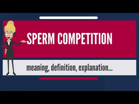 What is SPERM COMPETITION? What does SPERM COMPETITION mean? SPERM COMPETITION meaning