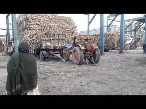 Zero Tyres Vs Belarus 510 Pulling Heavy Sugarcane Trolley on Circular Jack