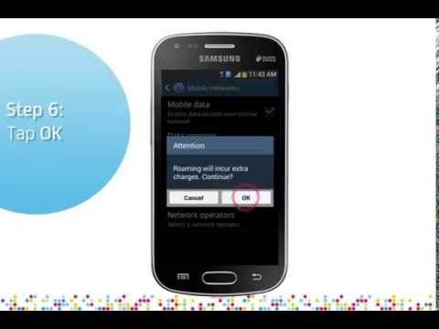 Samsung Galaxy S Duos 2: Turn on/off data roaming services