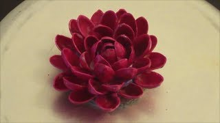Recycle : Pistachio (pista) Shells flower (diy)