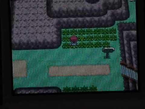 Pokemon Pearl/Platinum how to get Bagon