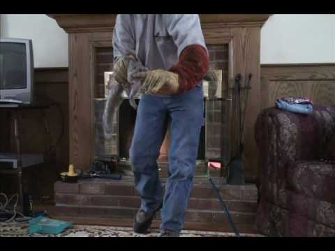 Squirrel Removal from Fireplace