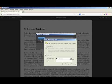 Fake install Adobe reader update