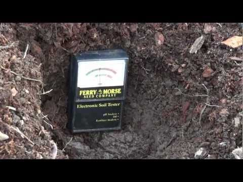 How to Test the pH of Your Soil