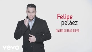 Felipe Pelaez - Cuando Quieras Quiero (Cover Audio)