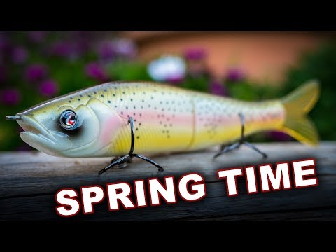 The 4 Best Baits For Finding Bass In Spring