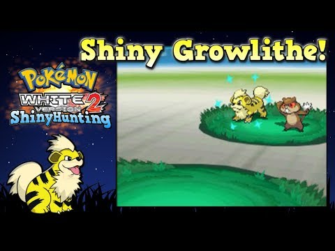 Shiny Growlithe Reaction! Pokémon Black 2 White 2 [Gen 5]