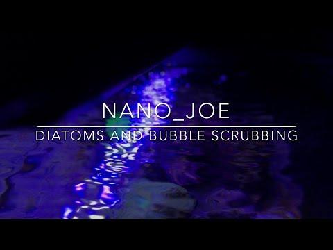 Diatoms in the Nano Reef | Bubble Scrubbing