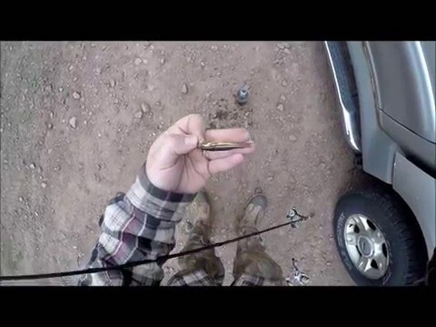 Showing how to Hook your minnows for Fishing Trout