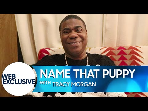 Name That Puppy with Tracy Morgan