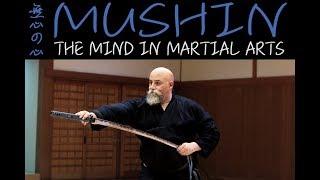 Mushin The Martial Arts Flow State & Utrainstinct