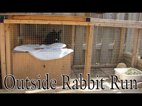BudgetBunny: Outside Rabbit Run