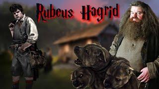 Rubeus Hagrid Origins Explained In Hindi || Hp The Magical School