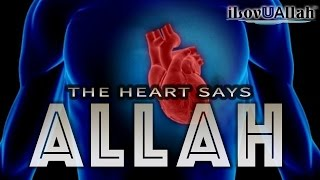 The Heart Says Allah | *Miracle Of Allah*