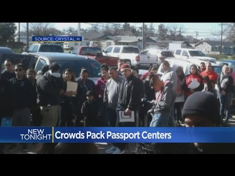 Passport Centers Overwhelmed As Immigration Enforcement Ramps Up