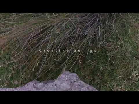 Natural Creative Beings | Creative Film | Zac Macfarlane