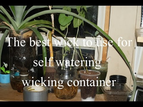 The best wick to use in self watering containers