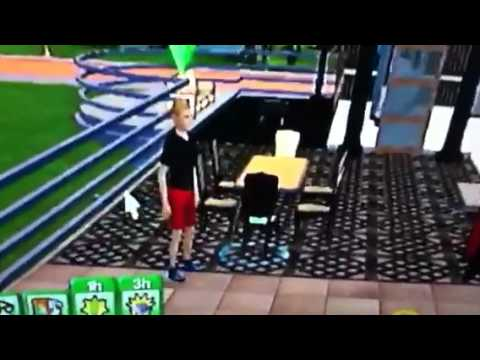 Sims 3 wii house