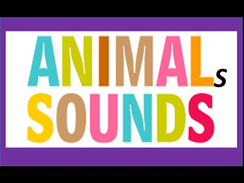 Sounds of animals for children