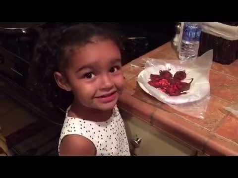 Gracie's Recipes: Chocolate Covered Pretzels