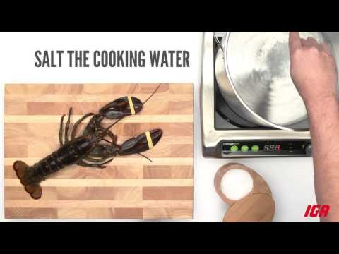 How to store and cook a lobster