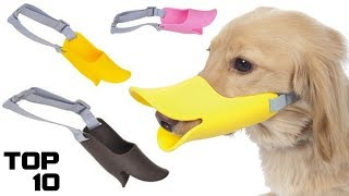Top 10 Dumbest Inventions For Dogs