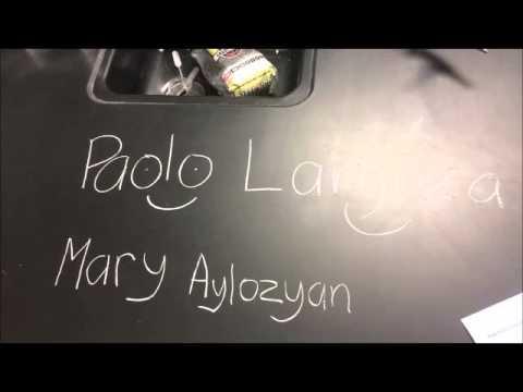 Chalk Lab Aylozyan and Largoza