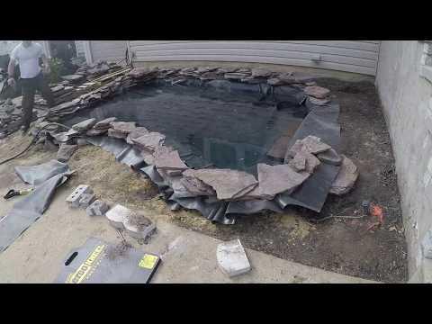 Koi / Fish Pond  - Time Lapse