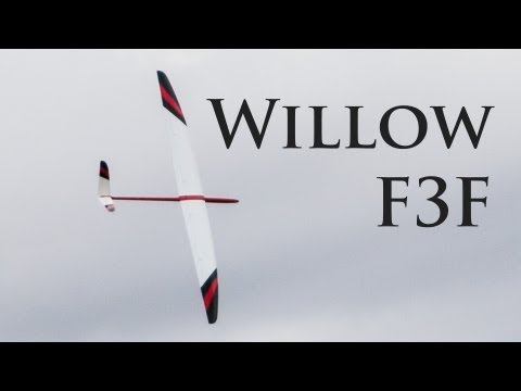 Adam's Willow F3F at Frocester