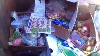Dumpster diving at Family Dollar and Dollar tree, Tuna for all
