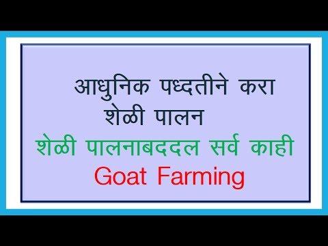 Goat Farming - शेळी पालन उद्योग बद्दल सर्वकाही !!!!!!