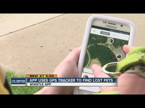 App uses GPS tracker to find lost pets